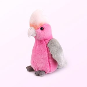 Galah plush toy