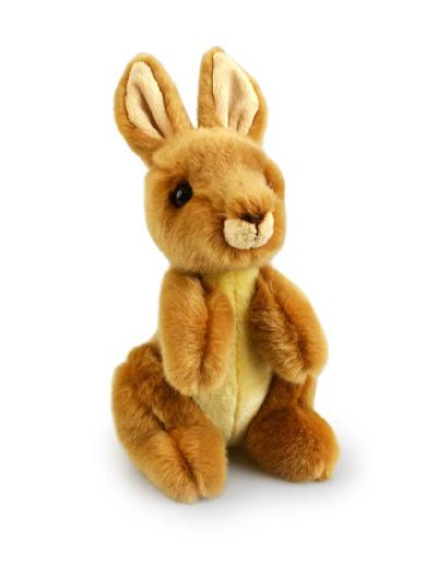 Lil Friends Kangaroo