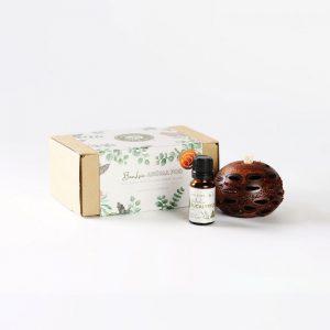 Mini eucalyptus oil & pod gift box